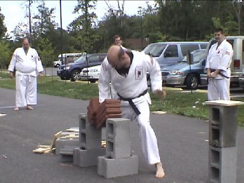 TCD2009-4-Brick-Break